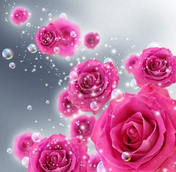 LAISSEZ PASSER LA VAGUE ROSE !