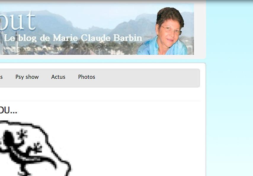 """Marie-Claude Barbin : """"Vous avez dit Pyromane?"""""""