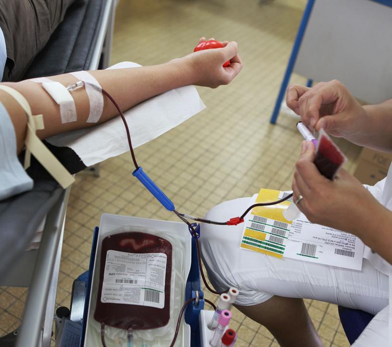 Collecte de sang, la cité du Butor à 100 %
