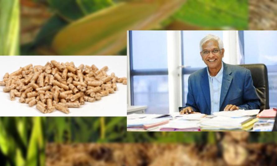 Serge Camatchy : Le projet Biomasse