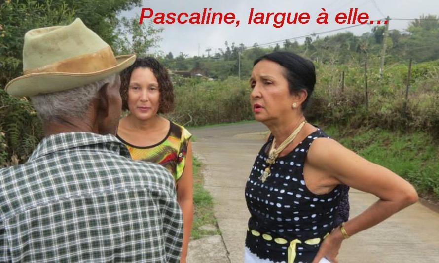 Départementale Saint-Paul : Lettre ouverte du PCR à Pascaline Chéreau-Némazine