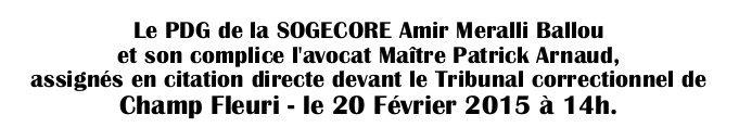 Tribunal : Le PDG de la SOGECORE Amir Meralli Ballou et son avocat Maître Patrick Arnaud