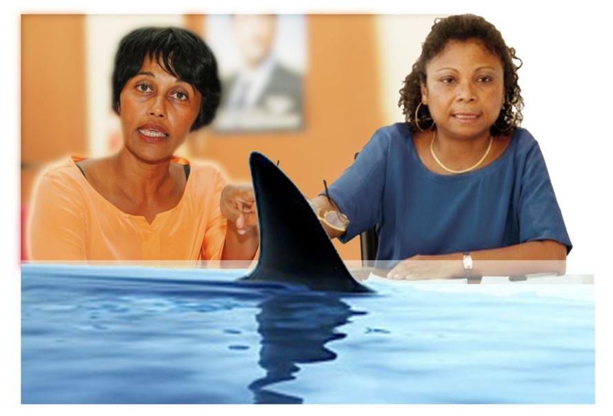 Crise requin : mais elles sont où nos députées Bareigts et Orphée ?