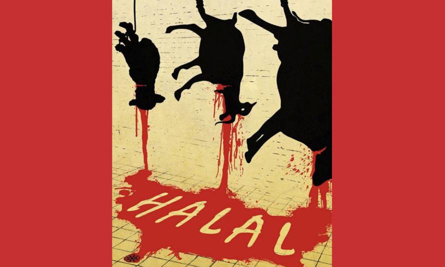 Le plus bel abattoir de France... est halal