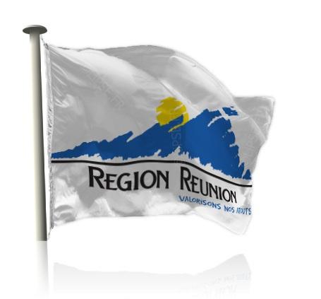 RÉGION RÉUNION : COMMISSION PERMANENTE DU 16 JUIN