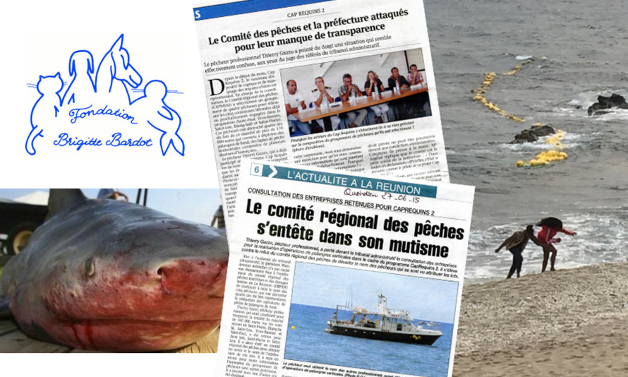 CapRequin : Mais que cachent la préfecture et le comité des pêches ?