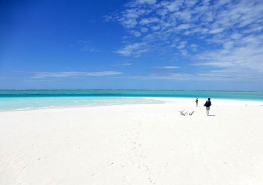 Encore 10 places pour qui veut visiter les îles Eparses…