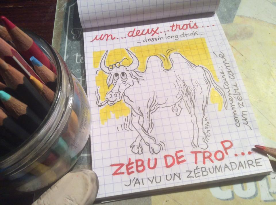 Le Zébumadaire
