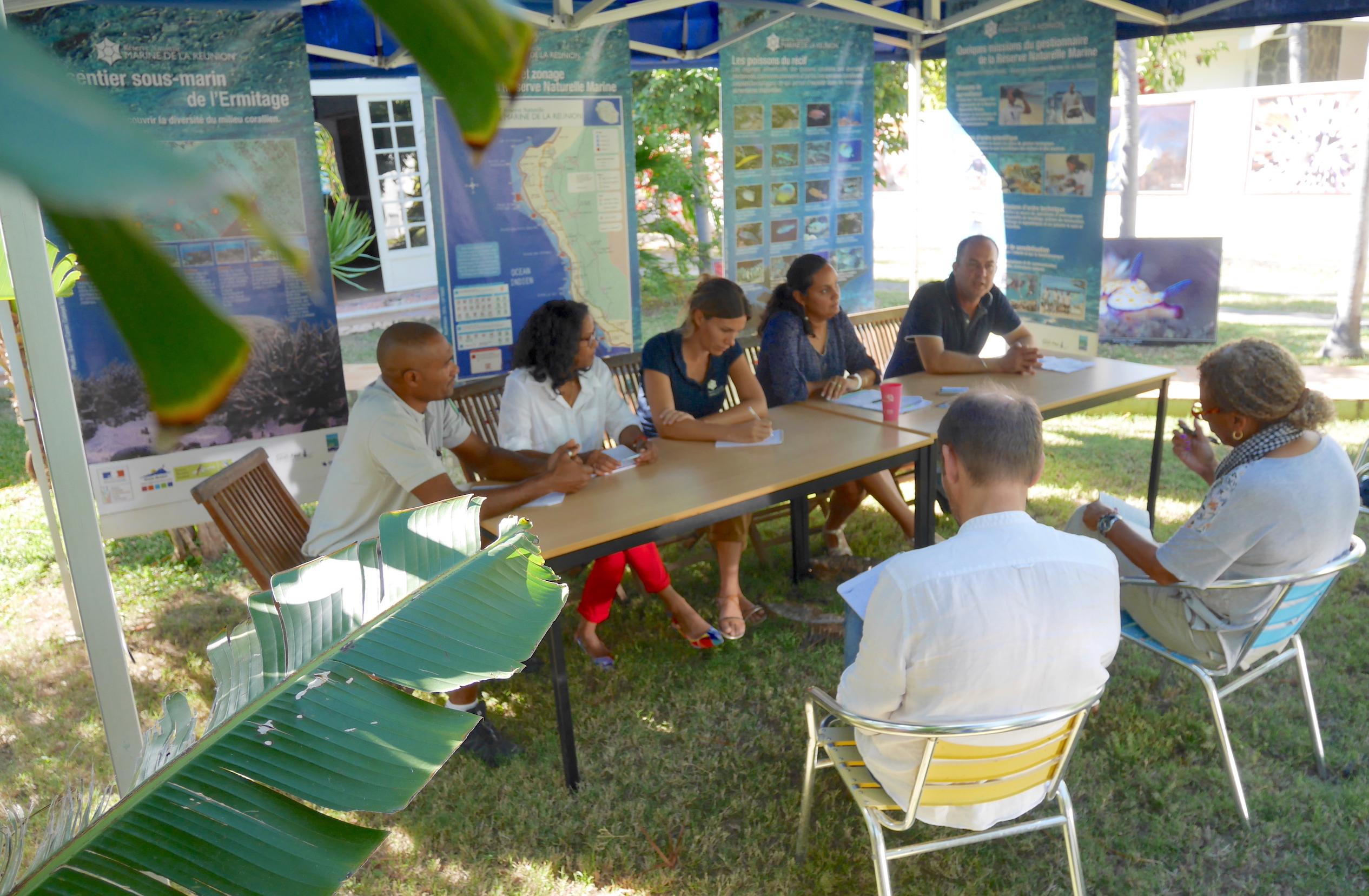 Année internationale des récifs coralliens : la Réserve Marine rappelle les enjeux et dévoile son plan d'actions