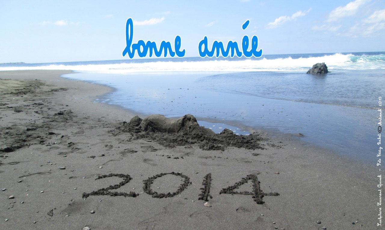 Artsenik : Bonne Année