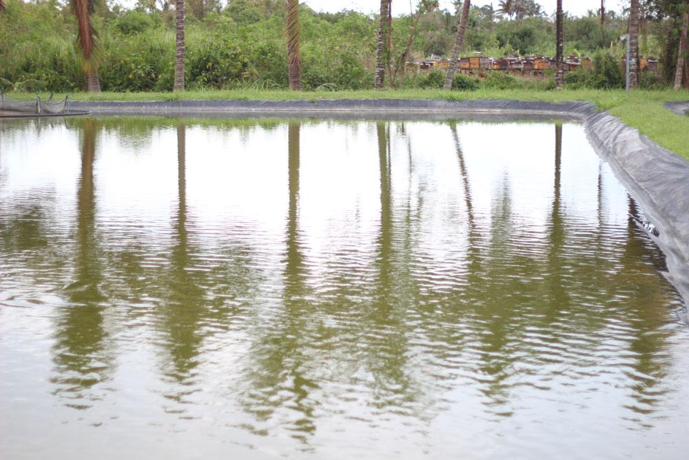 Des bassins vides