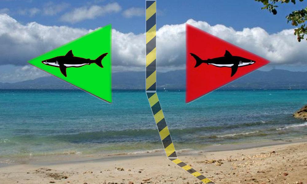 Plages : Avec ou Sans Requin ?
