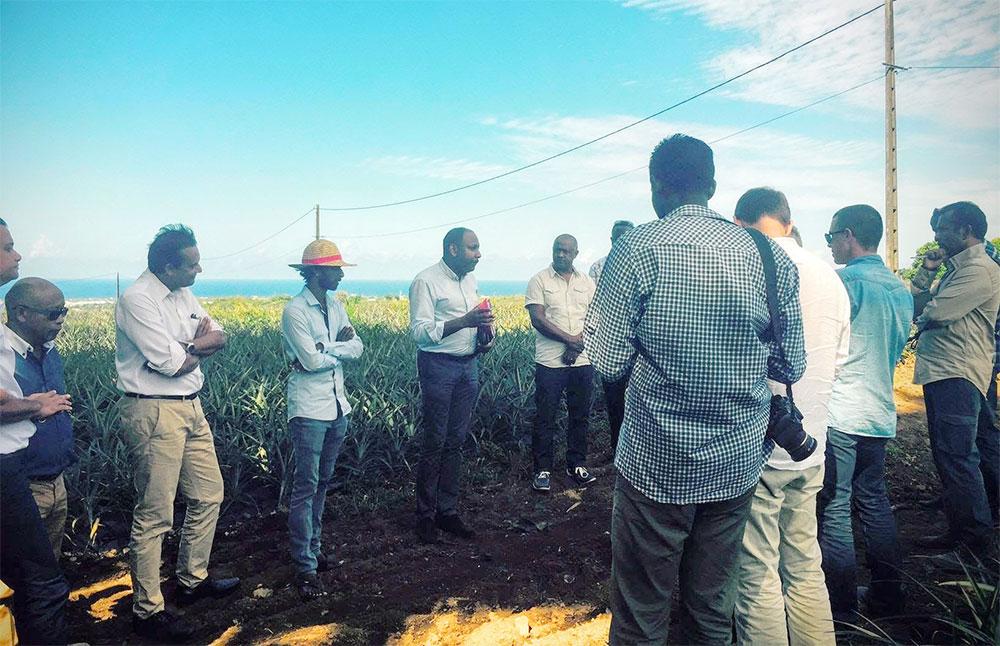 Thierry ROBERT : Initiatives, entreprise et terroir : la jeunesse kapab a envie de faire avancer le Made in Réunion !