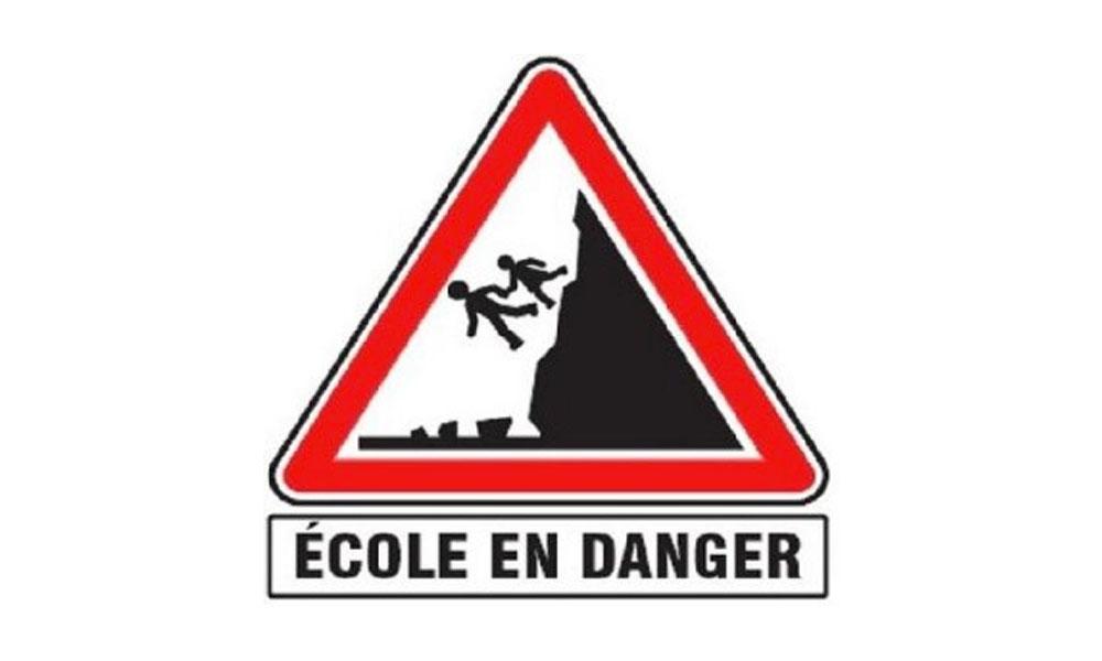 École Réunionnaise en Danger