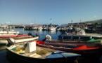 L'ARIPA a versé 2,4 millions d'euros d'aides européennes aux opérateurs locaux pour compenser les surcoûts de la pêche