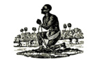 Le Peuple Réunionnais a 350 ans et nos politiques vont toujours faire leurs soldes à Paris
