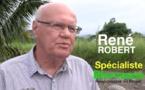 René Robert : La biomasse, comment ça fonctionne ?