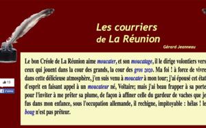 Les conseils de Gérard JEANNEAU pour une VIème République