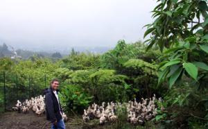 Sébastien Blard : désormais, La Réunion produit son propre foie gras
