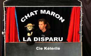 Chat maron la disparu