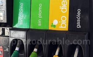 Le gaz en hausse et le sans-plomb en légère baisse