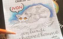 Journée internationale des chats