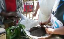 Antonia roul ton kafé na boir in kou