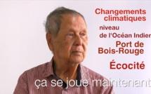 Paul VERGES : Écocité et Port de Bois Rouge